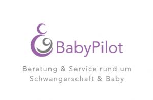 BabyPilot_Test